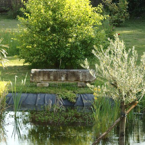 mare grenouille poisson flaner flanerie detente jardin vacance dordogne perigrd piscine