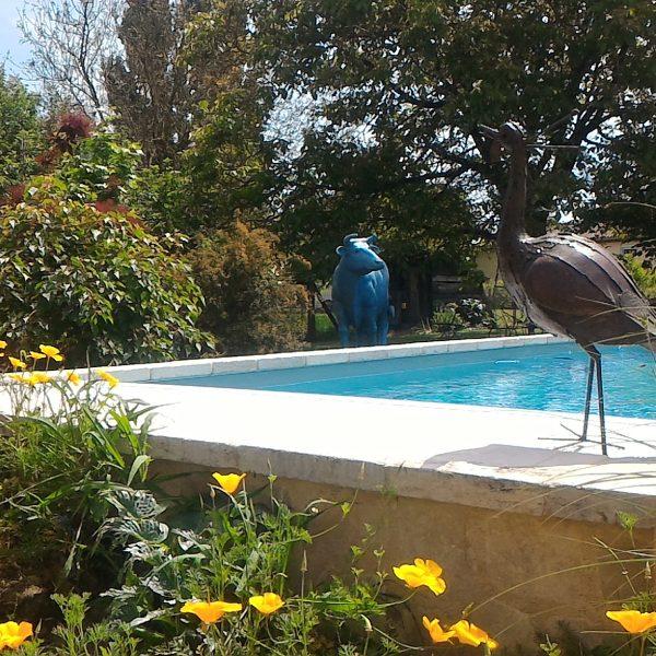 Le jardin et sa piscine